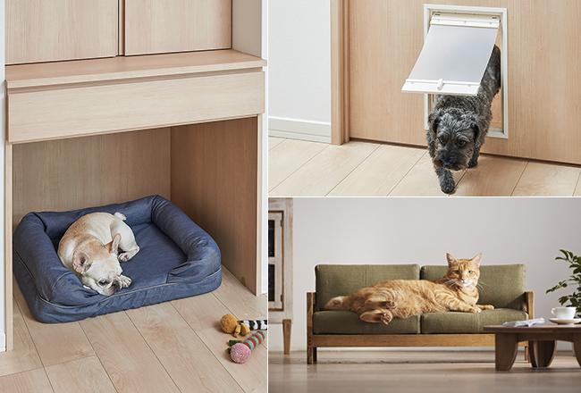 ペットとの暮らしがもっと快適に、楽しくなるインテリアを